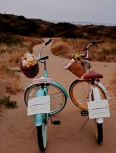 vestuviu-transportas1